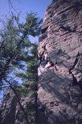 Rock Climbing Photo: Golden Ledges
