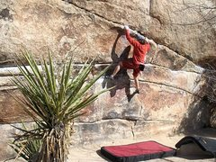 Rock Climbing Photo: Working up towards the vertical crack of High Noon...