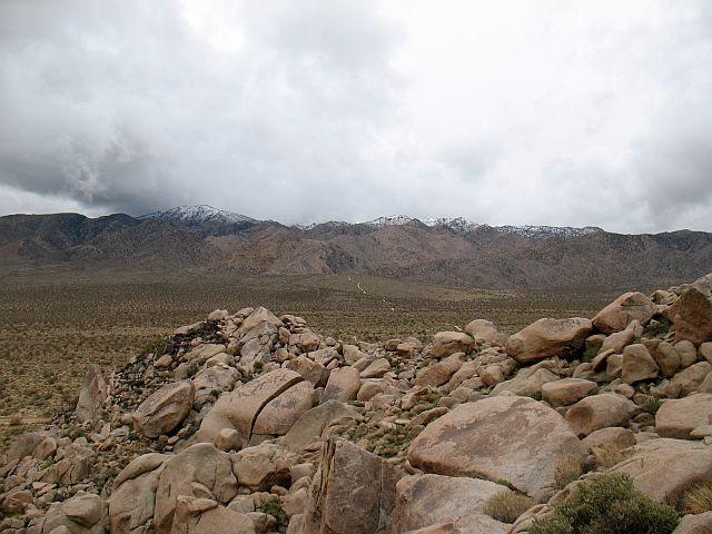 Geology Tour Road scenery, Joshua Tree NP