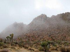 Rock Climbing Photo: The Negropolis in fog, Joshua Tree NP