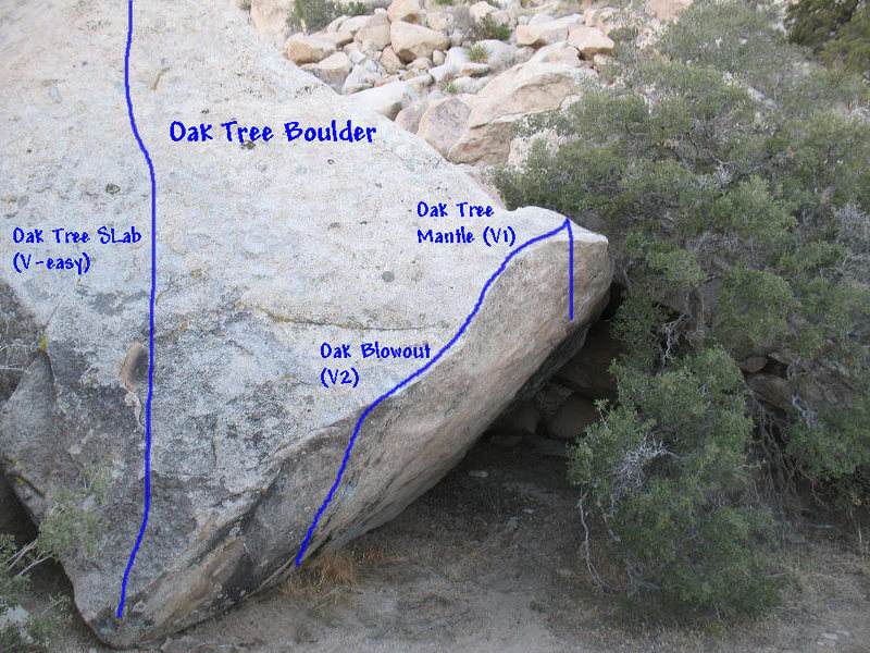 Photo/topo for Oak Tree Boulder, Joshua Tree NP