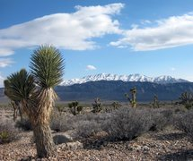 Rock Climbing Photo: Fossil Ridge, and Gass Peak  Desert National Wildl...