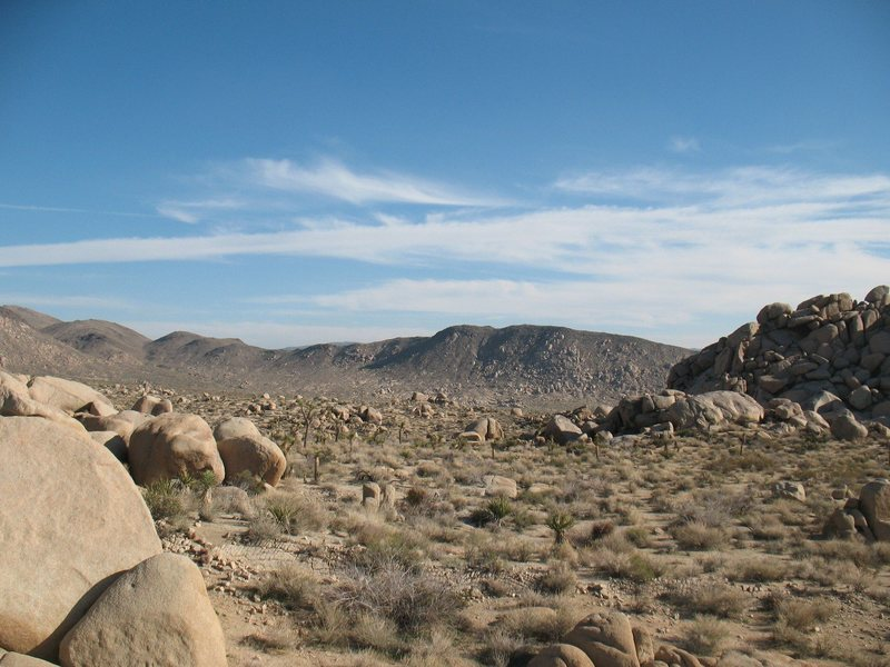 Rock Climbing Photo: The view from the Virgin Islands, Joshua Tree NP