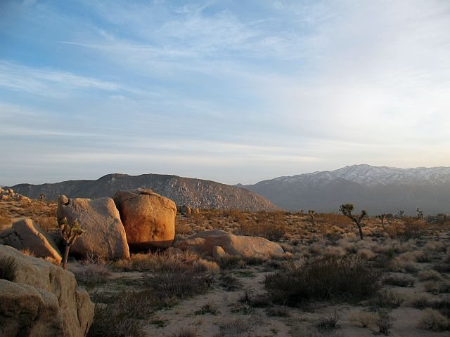 Last light from the Dripper Boulder, Joshua Tree NP