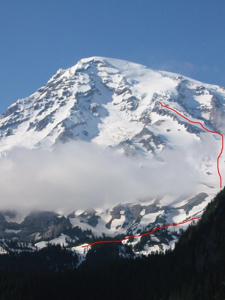 Ski line down &quot;The Turtle&quot; on Rainier, August, 1997.  Most parties ski down to the Nisqually Glacier.  Crossing the glacier seemed too dangerous to solo, so I started from Commet Fall, way more good easy skiing. <br> <br> The nuts and bolts will get posted.