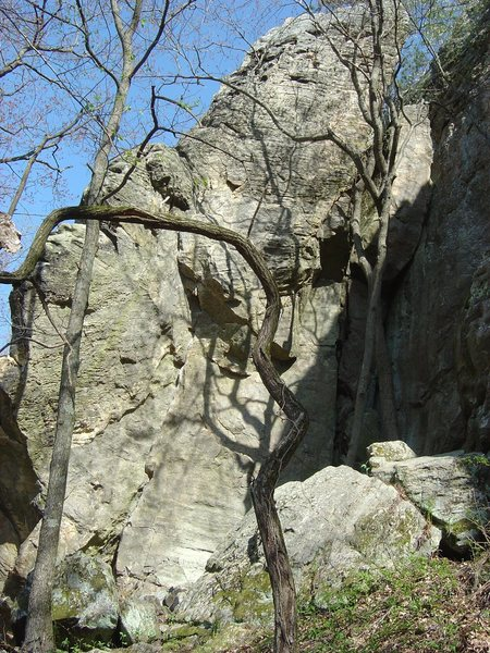 I took these shots of SAM in early 08 to study the route before trying it.  Recently found them again and maybe they would help someone work/send.  Obviously early in the season without chalk.  Great route, try it!  You can sling a large rock protrusion safely at the top and rap down to hang draws also.  Pic 1 of 4.