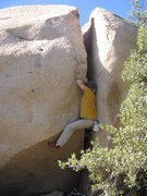 Rock Climbing Photo: Greg on one of his namesake routes.  Photo by Eliz...
