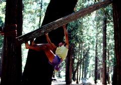 Rock Climbing Photo: Camp 4 training apparatus.