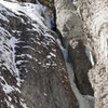 Slippery When Wet on Feb 1,2009. Photo by Dan Dalton.
