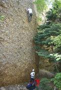 Rock Climbing Photo: Armadillo Waffles