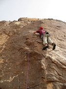 Rock Climbing Photo: Will at the 2nd bolt on Mauna Loa (5.9), Joshua Tr...