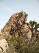 Rock Climbing Photo: Cave Rock (West Face), Joshua Tree NP