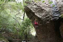 Rock Climbing Photo: Unkown climber on a climb across from X-Factor.