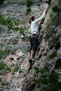 Rock Climbing Photo: Agina Sedler on her first lead (Monkey Mahem}.