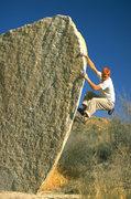 Rock Climbing Photo: Orange head on boulder in J Tree by J Dro