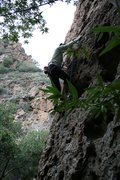 Rock Climbing Photo: Getting past the first bolt....