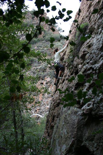 Rock Climbing Photo: ...next bolt....