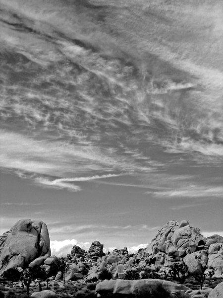 Rock Climbing Photo: Trees, rocks, and sky...