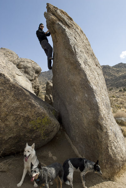 Rock Climbing Photo: A very popular line. Get there early, as a queue t...