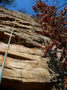 Rock Climbing Photo: The upper face of Voodoo, T-Wall (right rope line)...