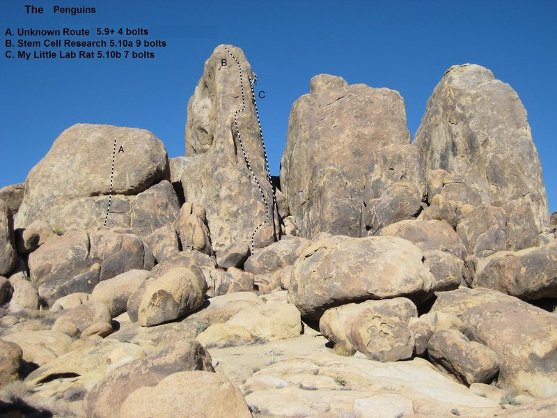 Rock Climbing Photo: Routes on the Penguins, Alabama Hills