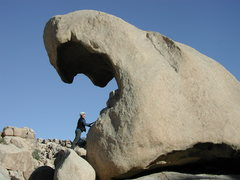 Rock Climbing Photo: Joshua Tree. Caverous weathering.