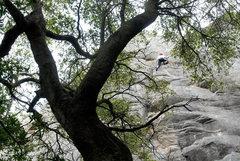 Rock Climbing Photo: San Ysidro Canyon, Santa Barbara