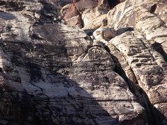 Rock Climbing Photo: Party below last pitch of Birdland.