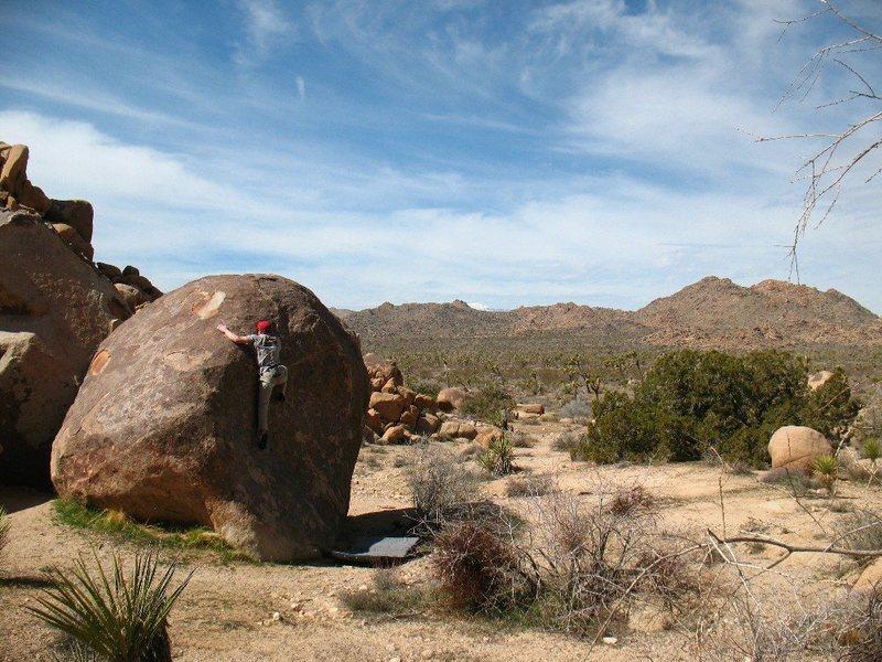 Rock Climbing Photo: Starting the crux of Unnamed (V1), Joshua Tree NP