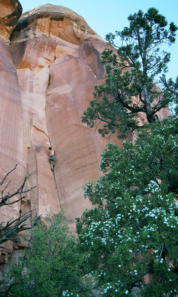 Rock Climbing Photo: Ian cranking it.