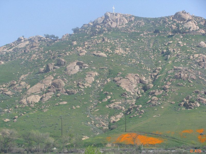 Rock Climbing Photo: Spring in Mt. Rubidoux