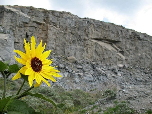 A touch of color, Riverside Quarry