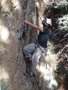 Rock Climbing Photo: Miguel Hoffman starting up Little Viking before it...