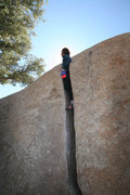 Rock Climbing Photo: zak on crack
