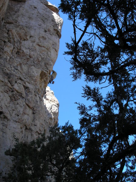 Rock Climbing Photo: Yay.