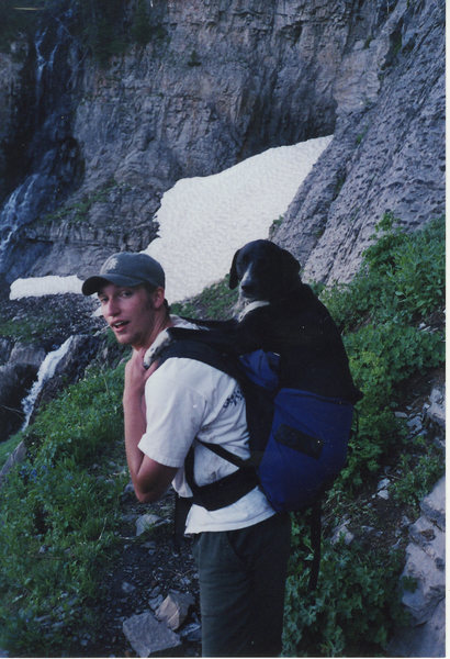 Rock Climbing Photo: My dog smooch getting packed off of Mount Timpanog...