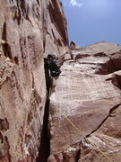 Rock Climbing Photo: Tom leading crux pitch of Kor Ingalls Rt.