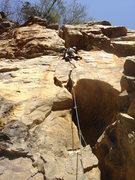 Rock Climbing Photo: Precious Orr - an unbelievable jem at T-wall.