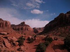 Rock Climbing Photo: Fall in the desert