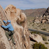 Lee nears the top of Who's First, on Pixie Rock in Indian Cove.