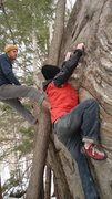 Rock Climbing Photo: Jake Lusona on Crimp Ladder while I sit in the tre...