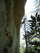 Rock Climbing Photo: Line of Fire