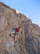 Rock Climbing Photo: Ross Allen, a NASA intern, top-roping the route