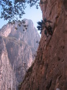 Rock Climbing Photo: View from the Spires