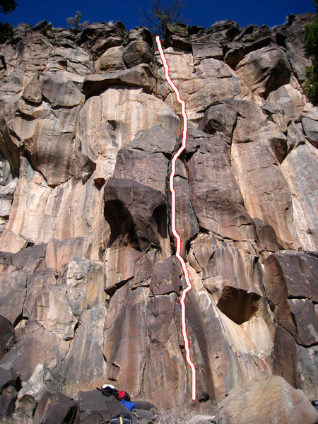 Rock Climbing Photo: Cactus Box. The dead tree has fallen down and remn...