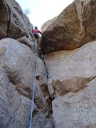 Rock Climbing Photo: Mike W. moving a little higher leading P2 on &quot...