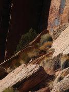 Rock Climbing Photo: great textures