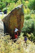 Rock Climbing Photo: Collin Beecher on Daisy Cutter