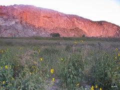 Rock Climbing Photo: Beautiful pinkish hue of a sunset at the Quarry.