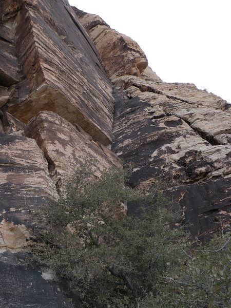 Rock Climbing Photo: The route takes the left facing corner system in t...